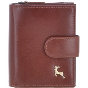 small-vegetable-tanned-cash-and-10-card-zip-around-purse-chestnut-v-61-1